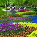 Top 10 jardines más bellos del mundo 3