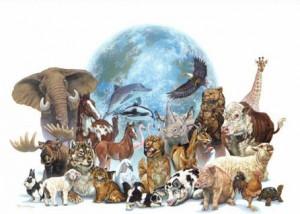 Top 10 especies en peligro de extinción 1
