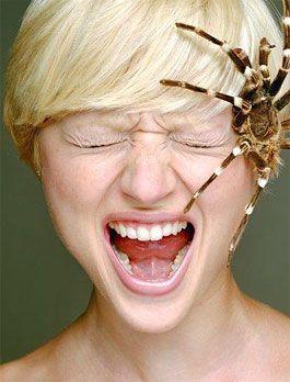 Top 10 tipos de fobias 1