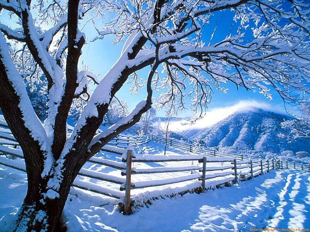 invierno-2