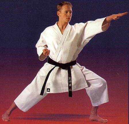 Top 10 artes marciales 1