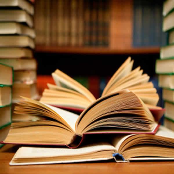 Top 10 libros para salir de la crisis 1
