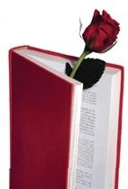 Top 10 mejores libros Dia Internacional del Libro 1