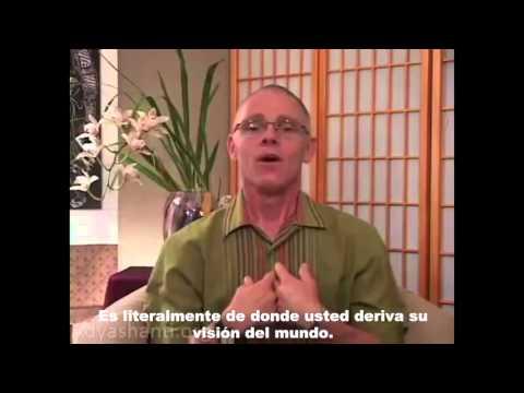 Adyashanti en español, aplicaciones principios basicos completo